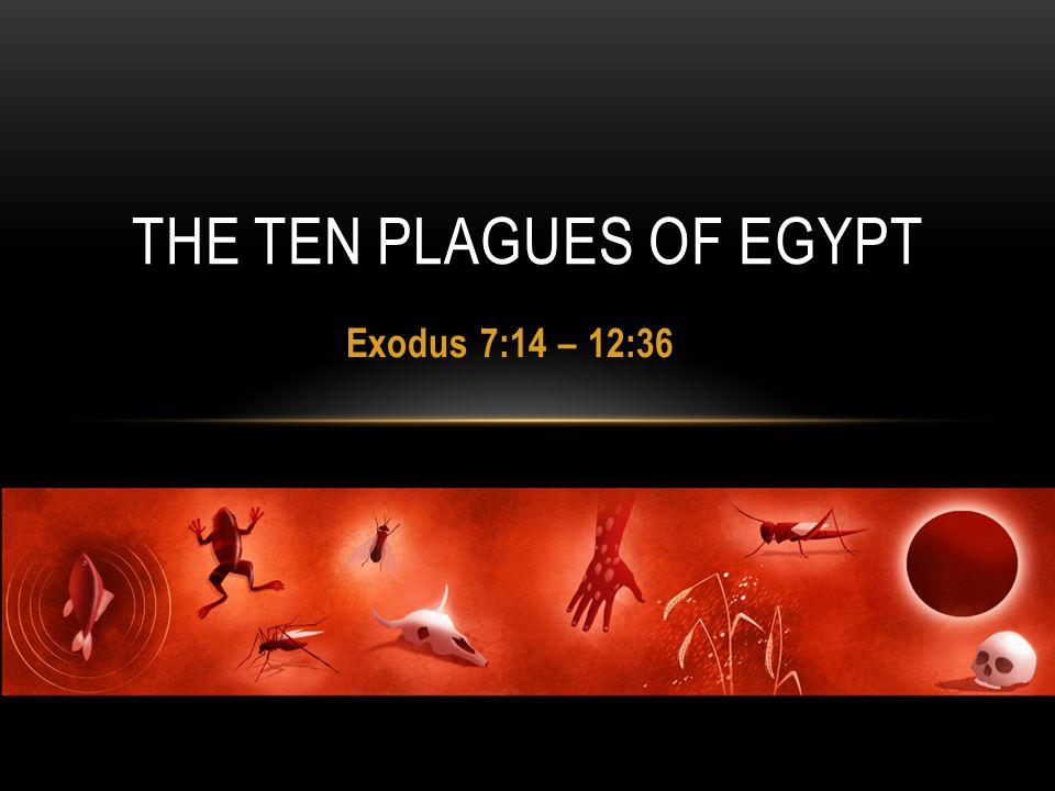 Exodus 7:14 – 12:36 THE TEN PLAGUES OF EGYPT