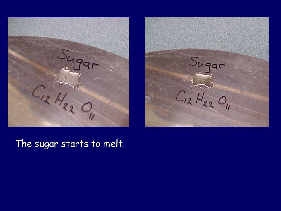 The sugar starts to melt.