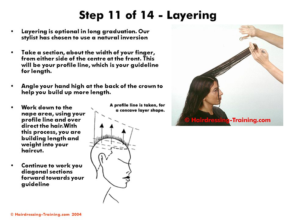 © Hairdressing-Training.com 2004 Step 11 of 14 - Layering Layering is optional in long graduation. Our stylist has chosen to use a natural inversion T