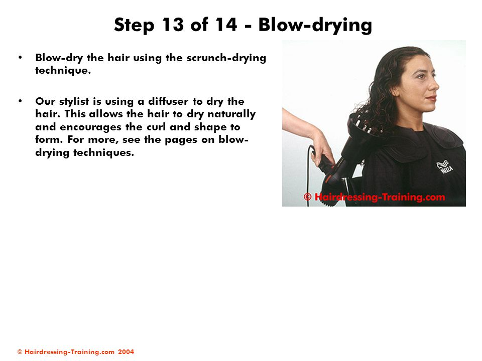 © Hairdressing-Training.com 2004 Step 13 of 14 - Blow-drying Blow-dry the hair using the scrunch-drying technique. Our stylist is using a diffuser to