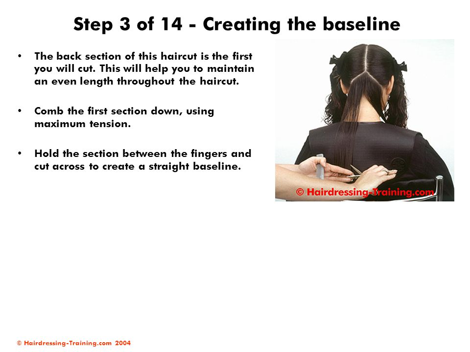 © Hairdressing-Training.com 2004 Step 3 of 14 - Creating the baseline The back section of this haircut is the first you will cut. This will help you t