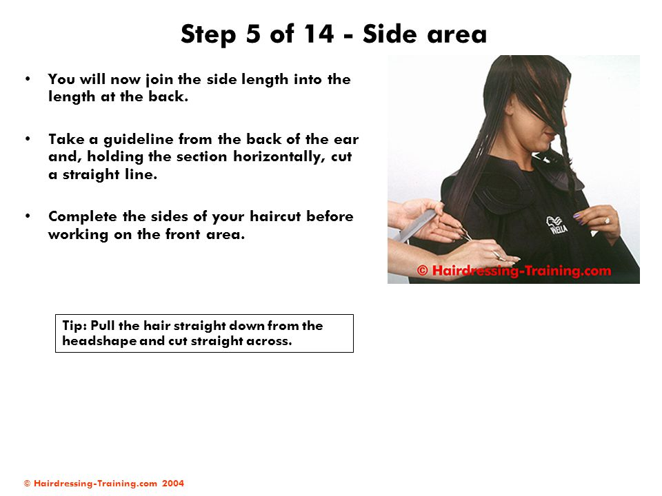 © Hairdressing-Training.com 2004 Step 5 of 14 - Side area You will now join the side length into the length at the back. Take a guideline from the bac
