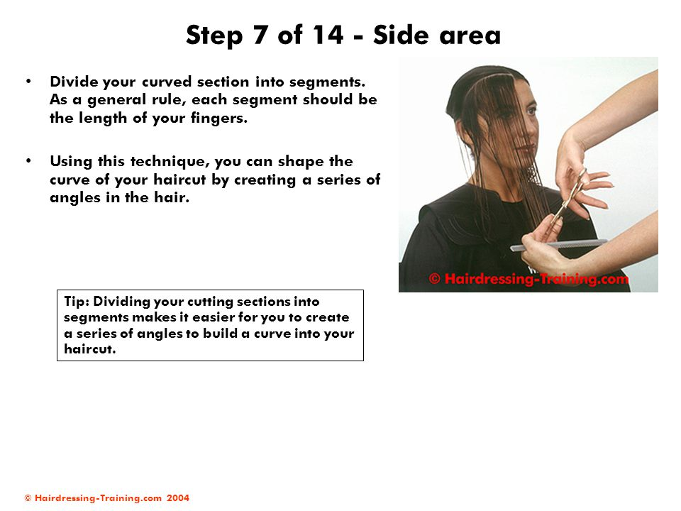 © Hairdressing-Training.com 2004 Step 7 of 14 - Side area Divide your curved section into segments. As a general rule, each segment should be the leng