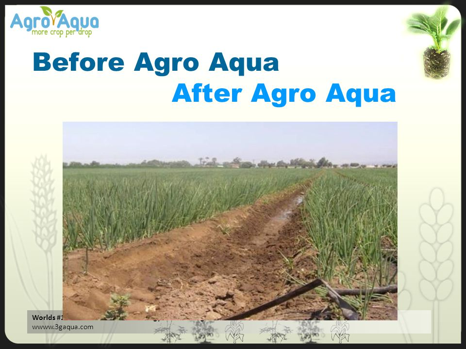 Worlds #1 Water Treatment Technology. No Running Cost - Zero Maintenance – Better Performance wwww.3gaqua.com Before Agro Aqua After Agro Aqua