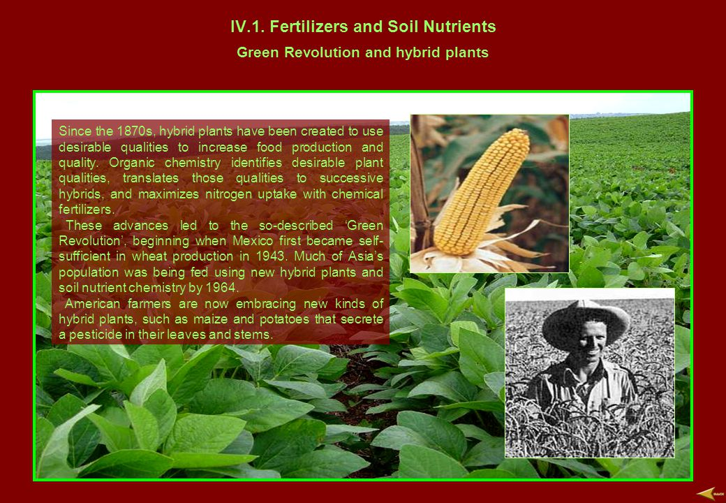 IV.1. Fertilizers and Soil Nutrients Green Revolution and hybrid plants Since the 1870s, hybrid plants have been created to use desirable qualities to