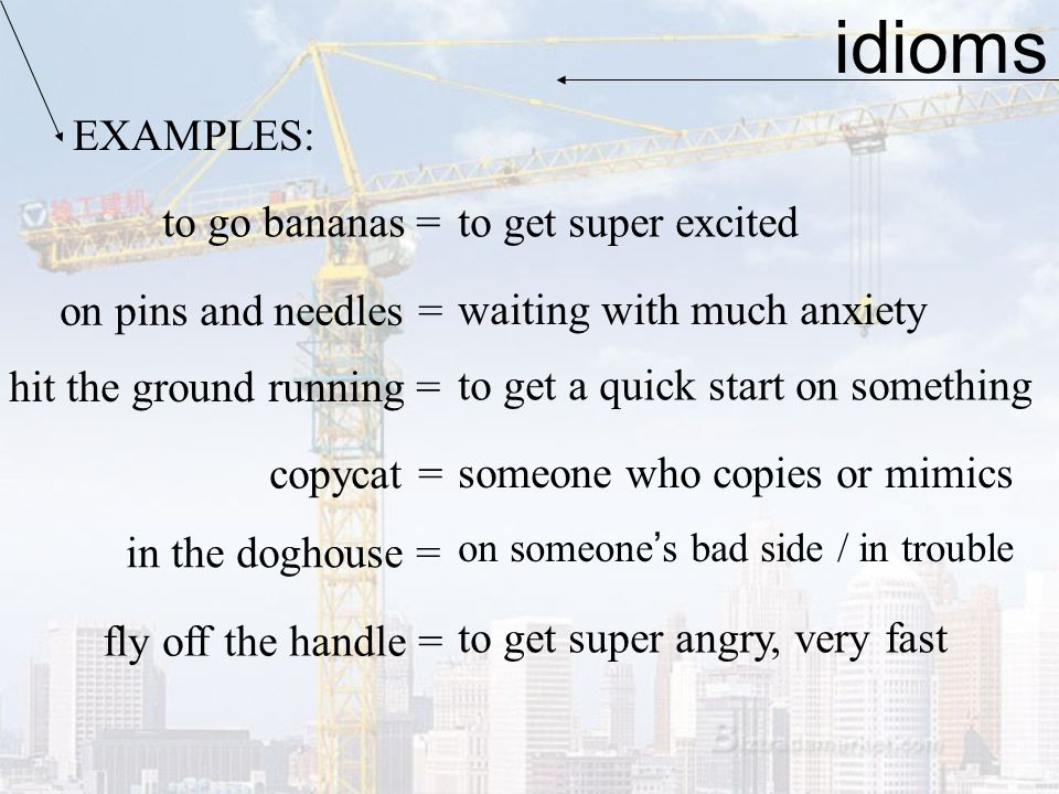 idioms EXAMPLES: to go bananas = on pins and needles = hit the ground running = copycat = in the doghouse = fly off the handle = to get super excited