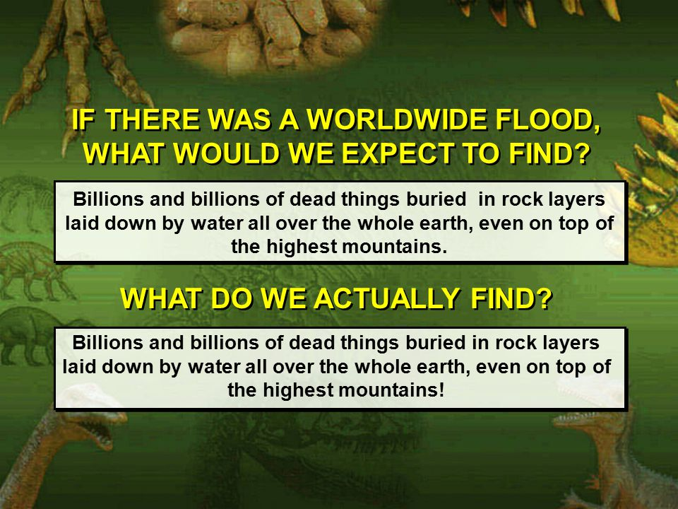 IF THERE WAS A WORLDWIDE FLOOD, WHAT WOULD WE EXPECT TO FIND.