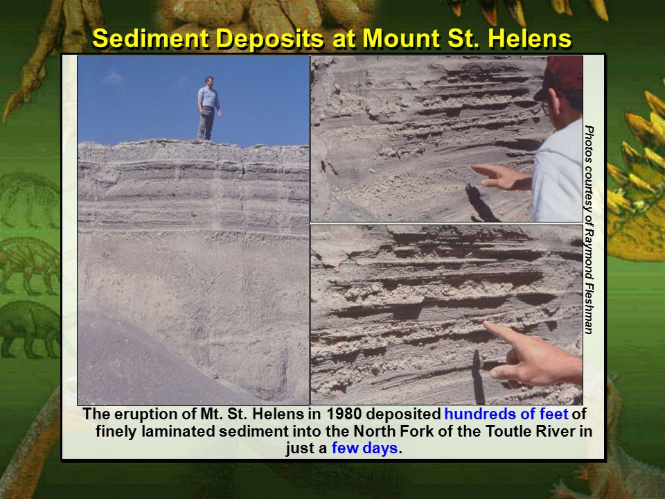 Sediment Deposits at Mount St. Helens Photos courtesy of Raymond Fleshman The eruption of Mt.