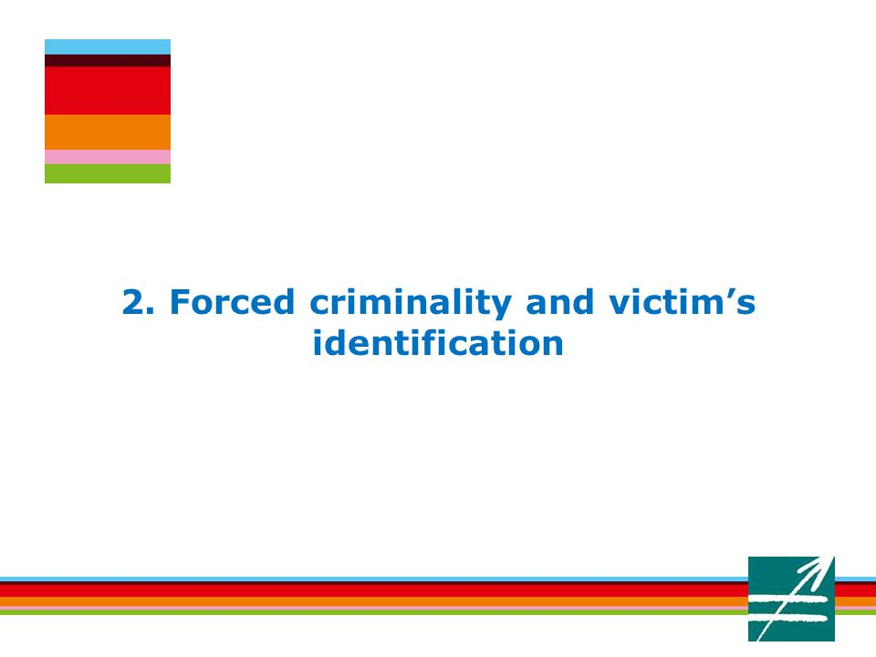 2. Forced criminality and victim's identification