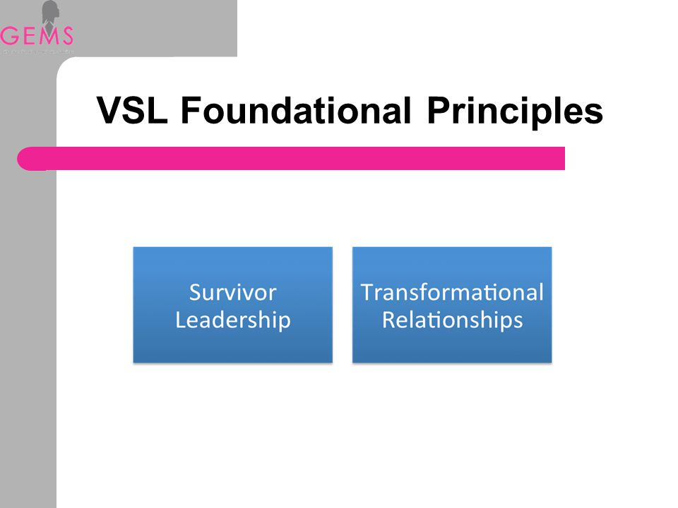 VSL Foundational Principles