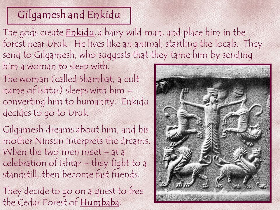 Gilgamesh and Enkidu The gods create Enkidu, a hairy wild man, and place him in the forest near Uruk.