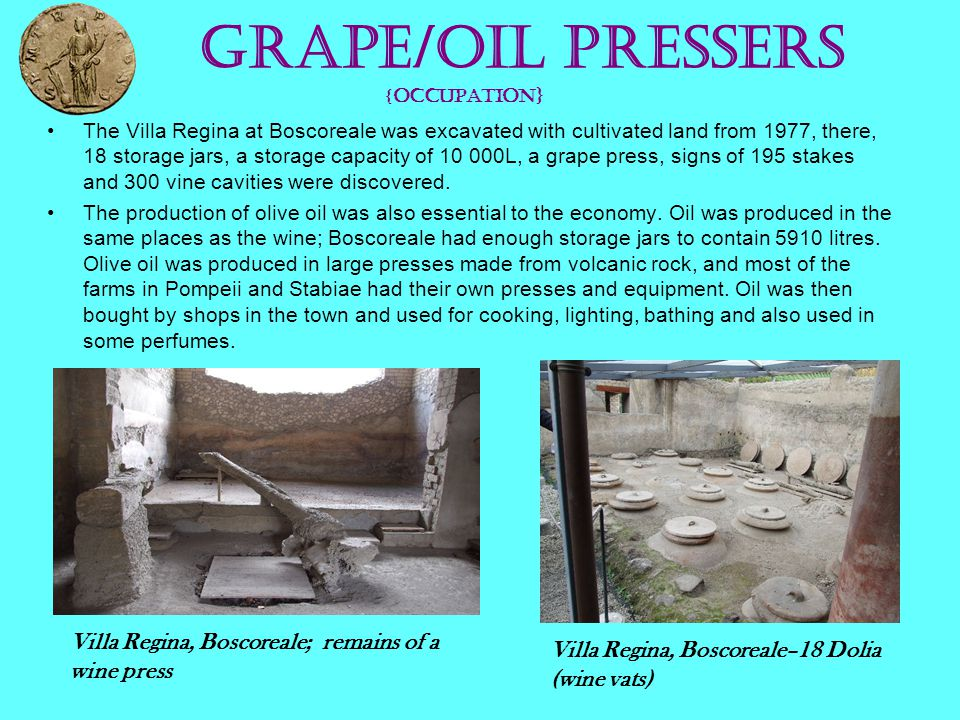 Grape/oil Pressers { OCCUPATION} The Villa Regina at Boscoreale was excavated with cultivated land from 1977, there, 18 storage jars, a storage capaci