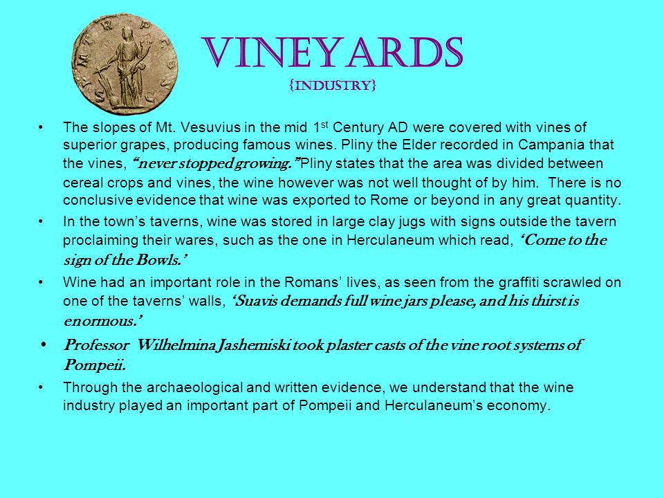 Vineyards {Industry} The slopes of Mt. Vesuvius in the mid 1 st Century AD were covered with vines of superior grapes, producing famous wines. Pliny t