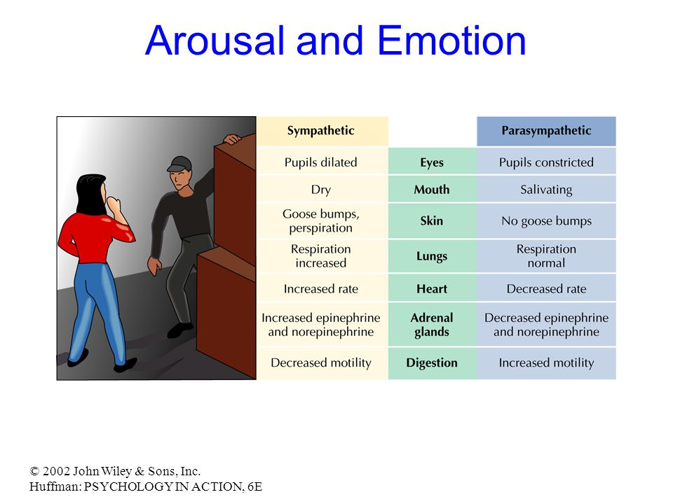 © 2002 John Wiley & Sons, Inc. Huffman: PSYCHOLOGY IN ACTION, 6E Arousal and Emotion