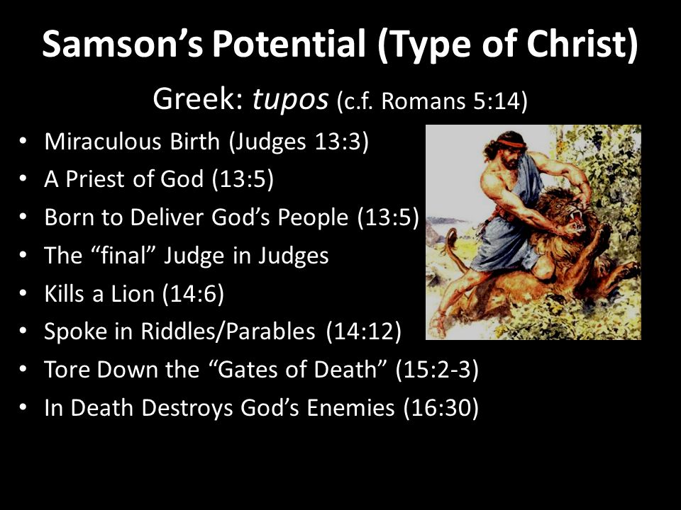 Samson's Potential…His Feats Samson's Strong Start The Killing of the Lion (14:5-9) Killing 30 Philistines (14:19) Burning the Philistine Fields (15:4-6) Killing Philistines After They Killed His Wife (15:7-8) Killing 1000 Philistines with a Donkey Jawbone (15:14-17) Samson's Tragic Decline Tearing Down the Gaza Gate (16:3) Escape from Bowstrings (16:9) Escape from New Ropes (16:12) Escape from the Loom (16:14) Killing 3000 Philistines by His Death (16:28-30)