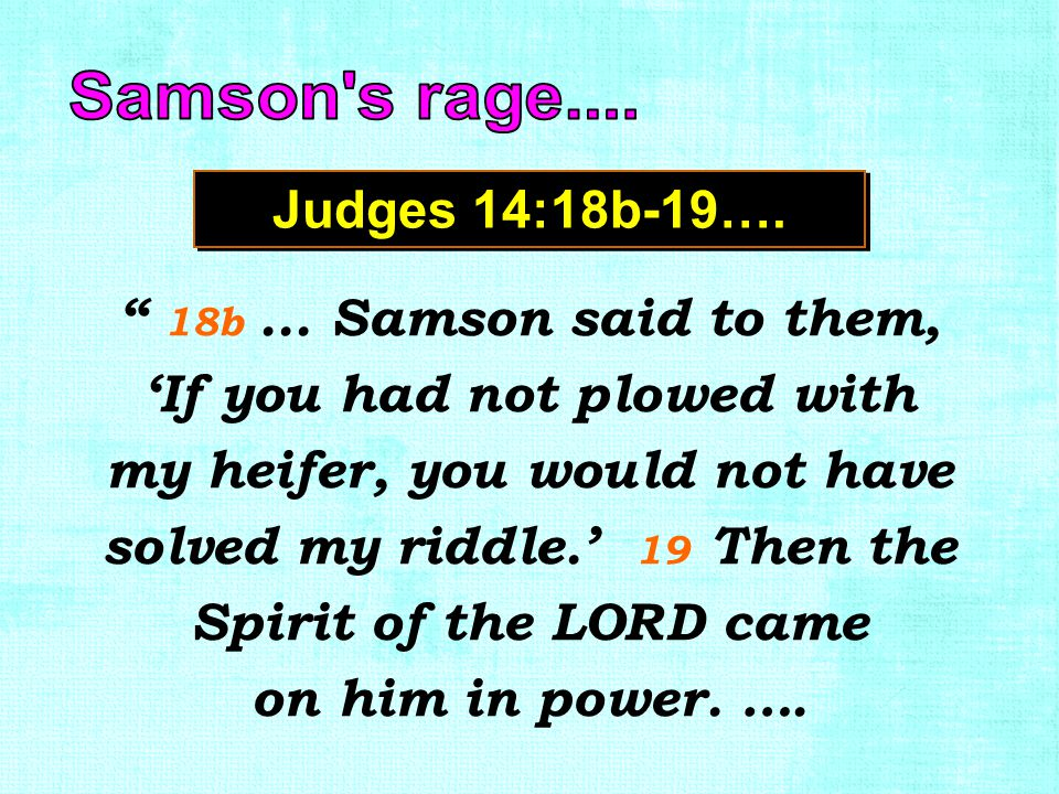 "Judges 14:18b-19…. "" 18b... Samson said to them, 'If you had not plowed with my heifer, you would not have solved my riddle.' 19 Then the Spirit of th"