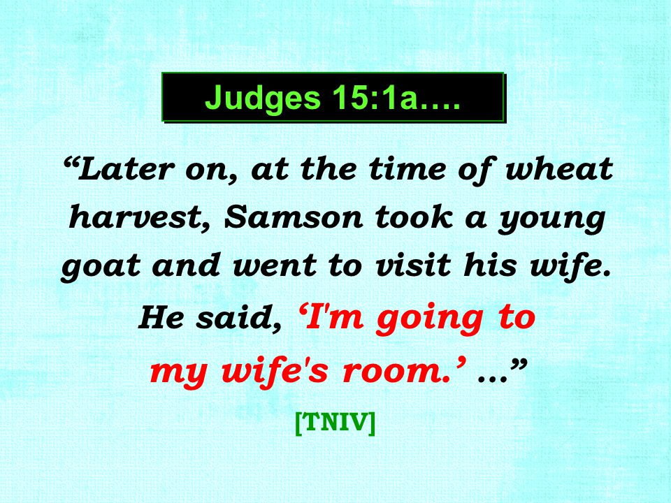 """Later on, at the time of wheat harvest, Samson took a young goat and went to visit his wife. He said, 'I'm going to my wife's room.' …"" [TNIV] Judges"