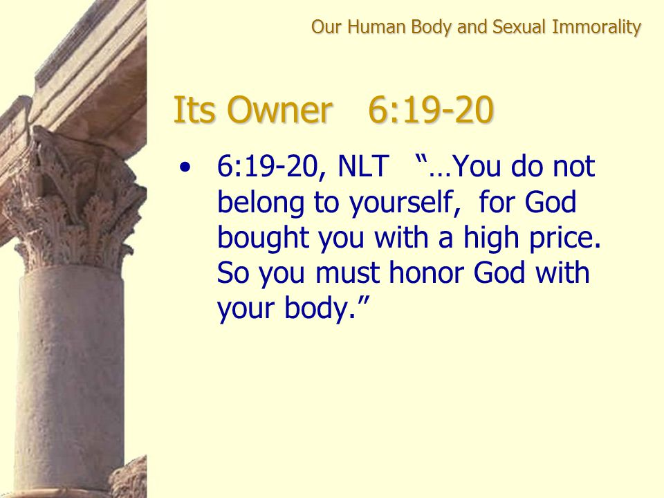 """6:19-20, NLT """"…You do not belong to yourself, for God bought you with a high price. So you must honor God with your body."""" Our Human Body and Sexual I"""