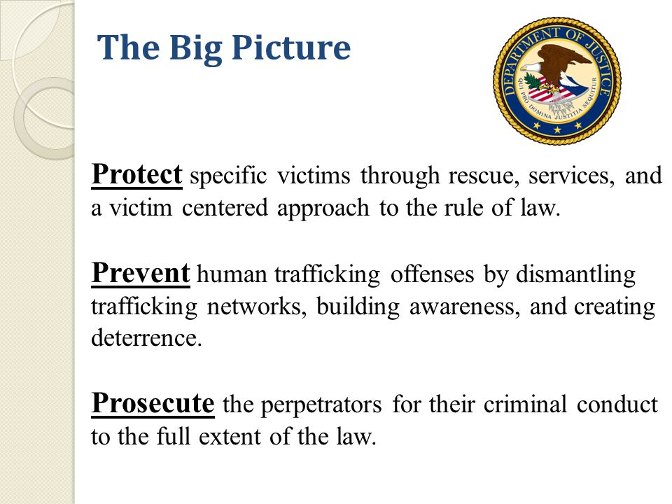 The Big Picture Protect specific victims through rescue, services, and a victim centered approach to the rule of law.
