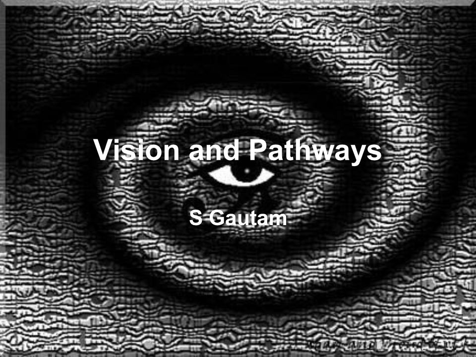 Vision and Pathways S Gautam