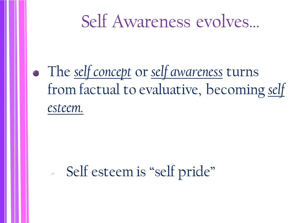 Self Awareness evolves… The self concept or self awareness turns from factual to evaluative, becoming self esteem.