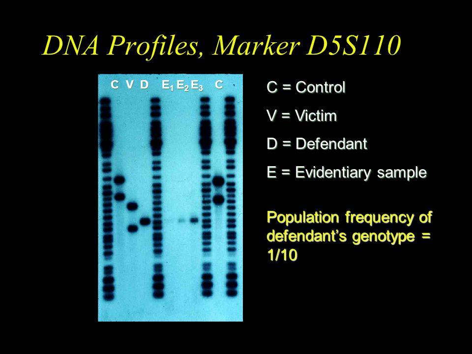 DNA Profiles, Marker D4S139 C = Control V = Victim D = Defendant E = Evidentiary sample Population frequency of defendant's genotype = 1/90 C V D E 1