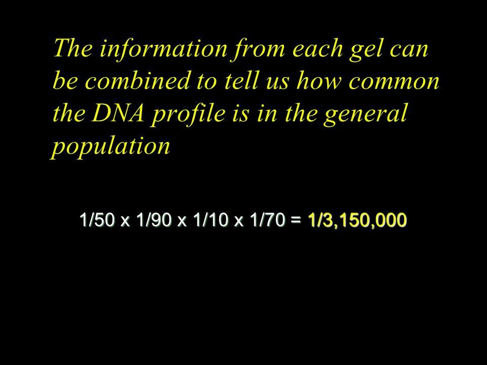 DNA Profiles, Marker TH01 C = Control V = Victim D = Defendant E = Evidentiary sample Population frequency of defendant's genotype = 1/70 C V D E 1 E
