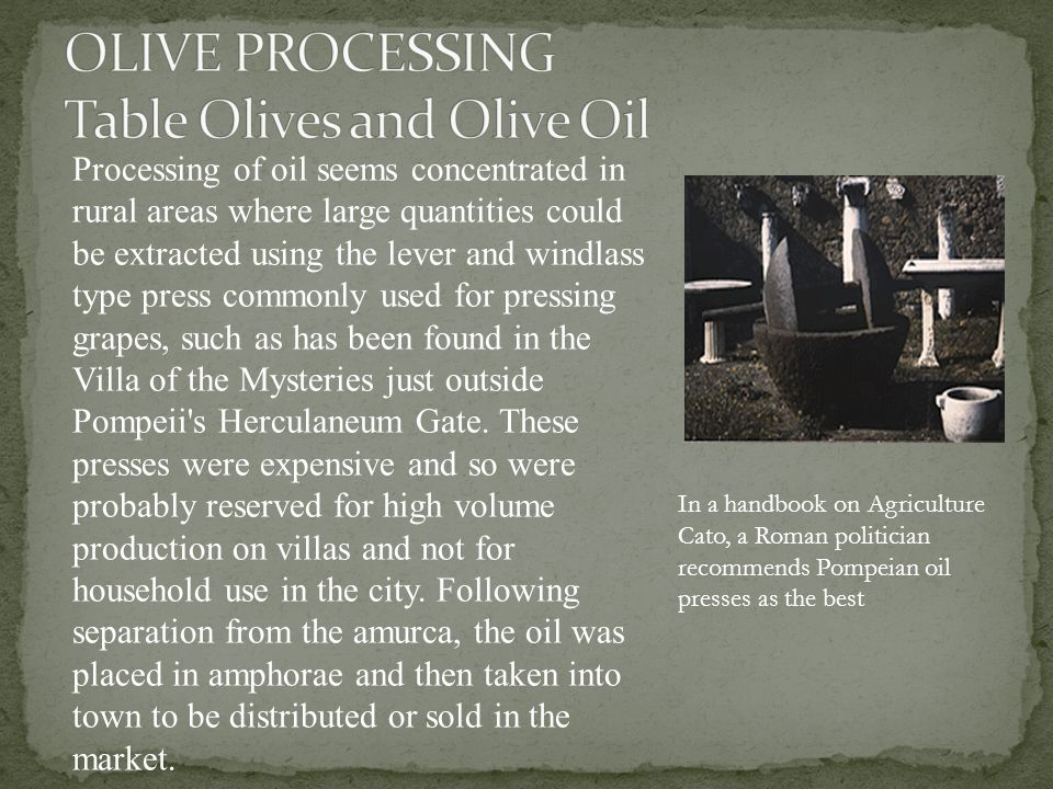 Processing of oil seems concentrated in rural areas where large quantities could be extracted using the lever and windlass type press commonly used for pressing grapes, such as has been found in the Villa of the Mysteries just outside Pompeii s Herculaneum Gate.