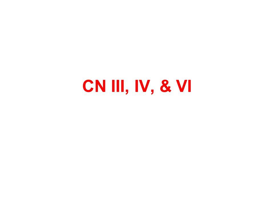 CN III, IV, & VI
