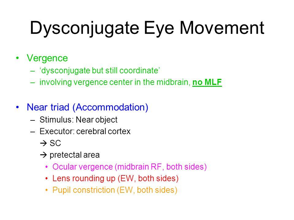 Dysconjugate Eye Movement Vergence –'dysconjugate but still coordinate' –involving vergence center in the midbrain, no MLF Near triad (Accommodation)