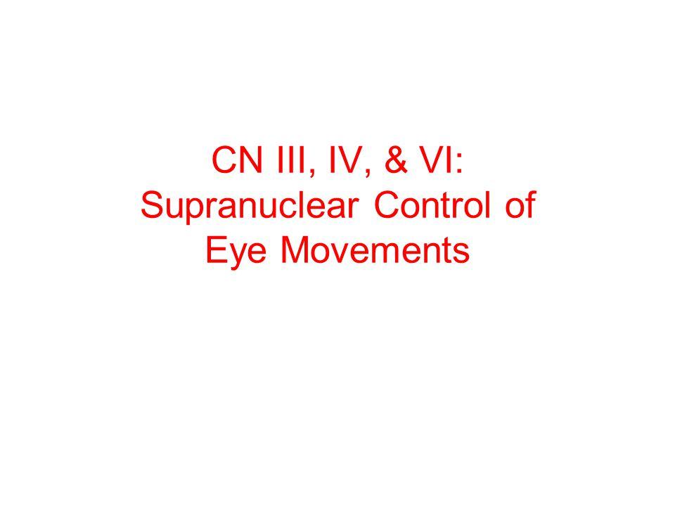 CN III, IV, & VI: Supranuclear Control of Eye Movements