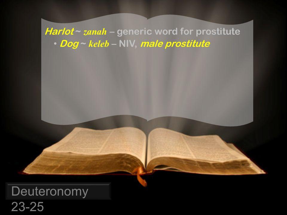 Deuteronomy 23-25 Harlot ~ zanah – generic word for prostitute Dog ~ keleb – NIV, male prostitute