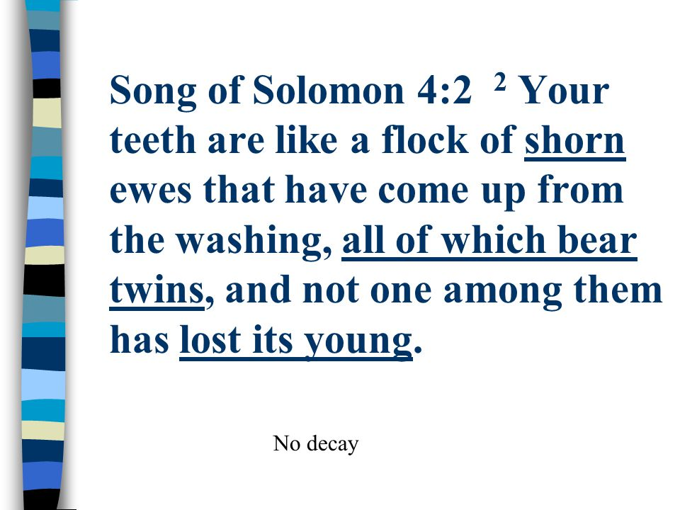 Song of Solomon 4:2 2 Your teeth are like a flock of shorn ewes that have come up from the washing, all of which bear twins, and not one among them ha