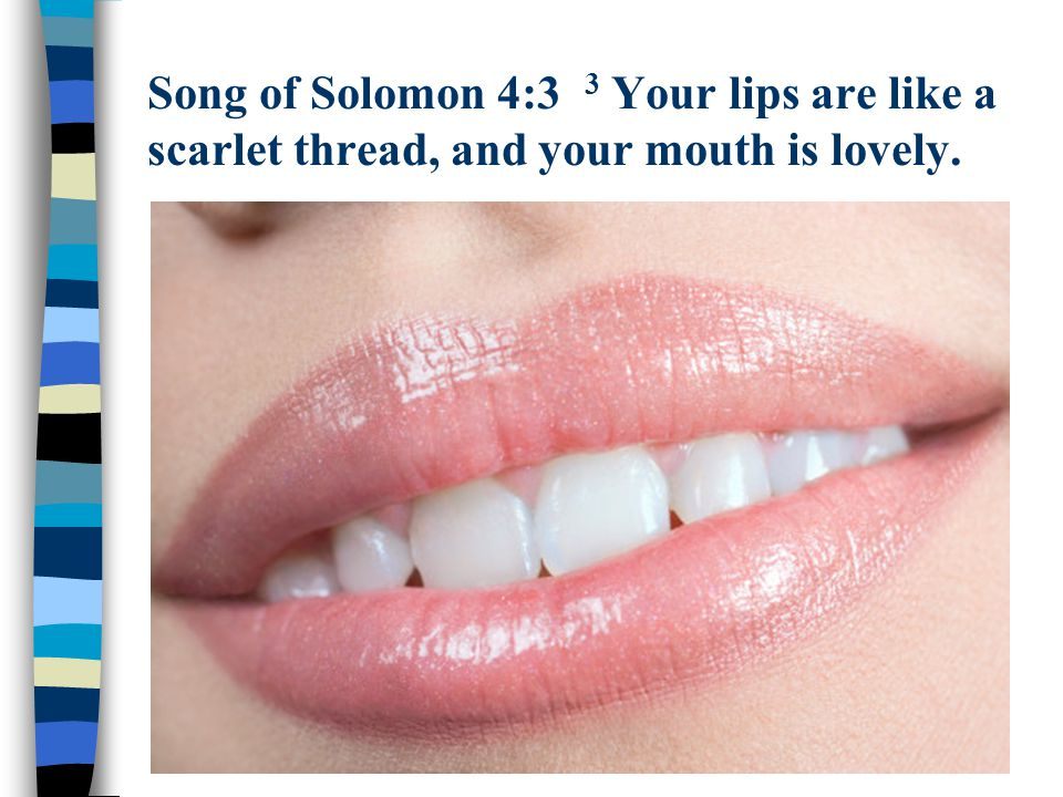 Song of Solomon 4:3 3 Your lips are like a scarlet thread, and your mouth is lovely.