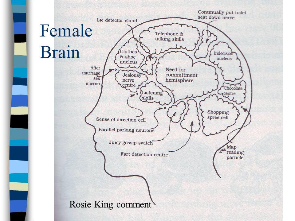 Female Brain Rosie King comment