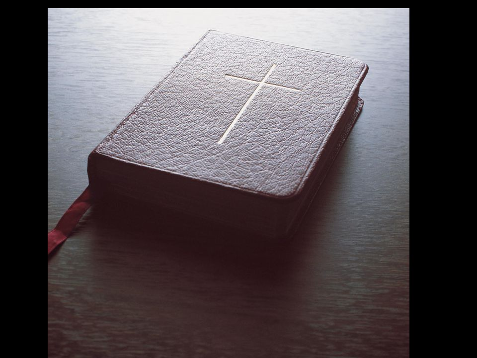  When you were born, no one cut your umbilical cord or washed you or rubbed you with salt or wrapped you in cloths.