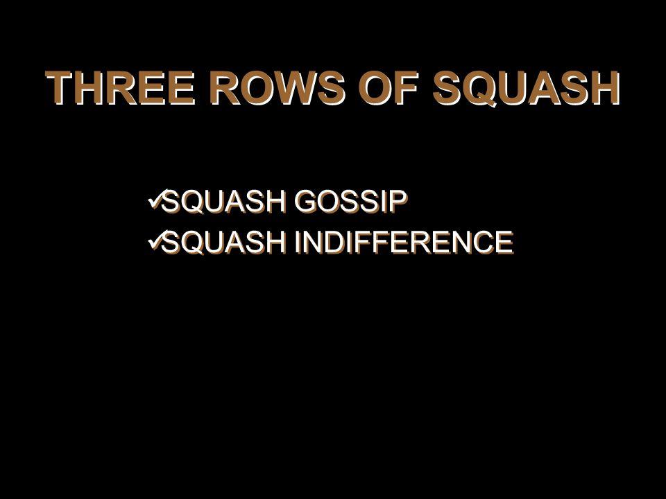 THREE ROWS OF SQUASH SQUASH GOSSIP SQUASH INDIFFERENCE SQUASH GOSSIP SQUASH INDIFFERENCE