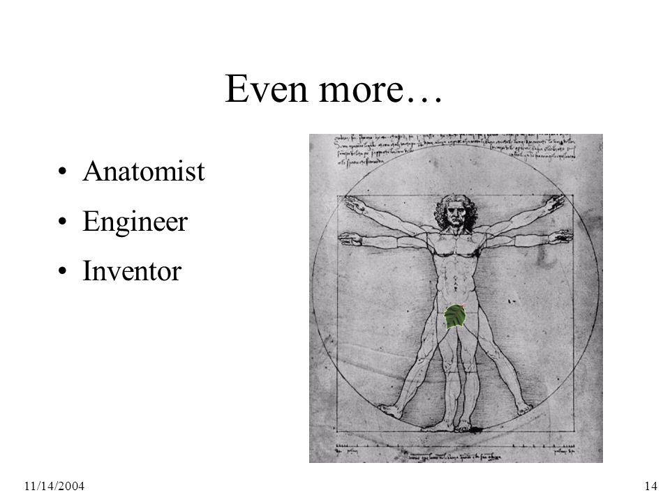 11/14/200414 Even more… Anatomist Engineer Inventor