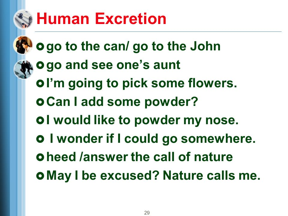 29 Human Excretion  go to the can/ go to the John  go and see one's aunt  I'm going to pick some flowers.