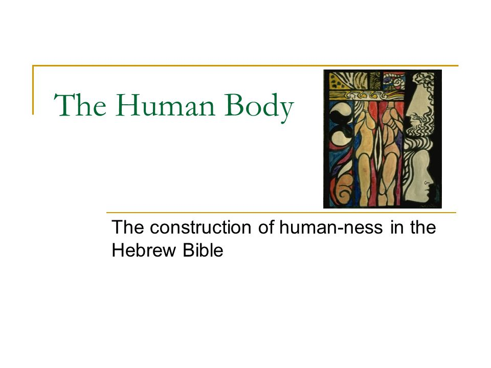 The Human Body The construction of human-ness in the Hebrew Bible