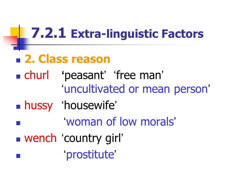 7.2.1 Extra-linguistic Factors 2.