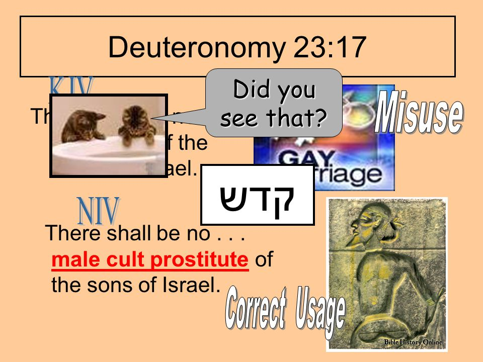 Deuteronomy 23:17 There shall be no... sodomite of the sons of Israel. There shall be no... male cult prostitute of the sons of Israel. קדש Did you se