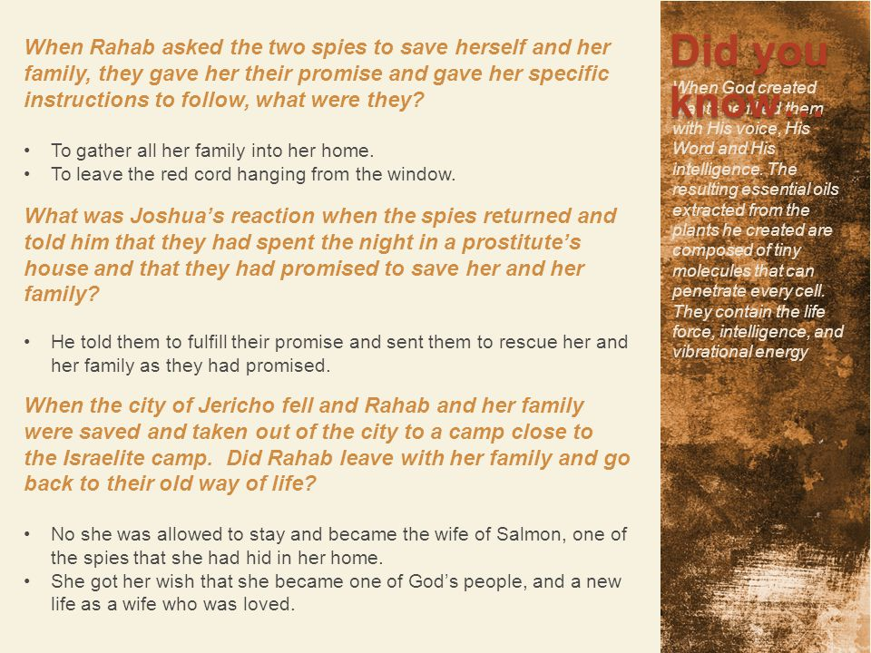 When Rahab asked the two spies to save herself and her family, they gave her their promise and gave her specific instructions to follow, what were the