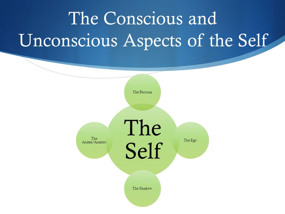 The Conscious and Unconscious Aspects of the Self The Self The PersonaThe EgoThe Shadow The Anima/Animus