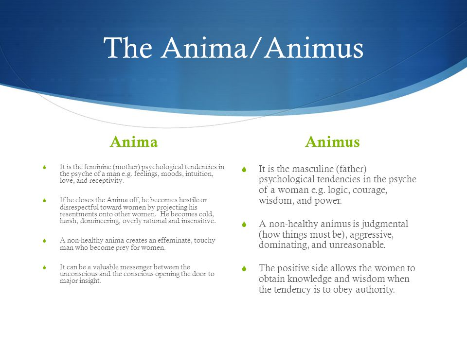 The Anima/Animus Anima  It is the feminine (mother) psychological tendencies in the psyche of a man e.g.