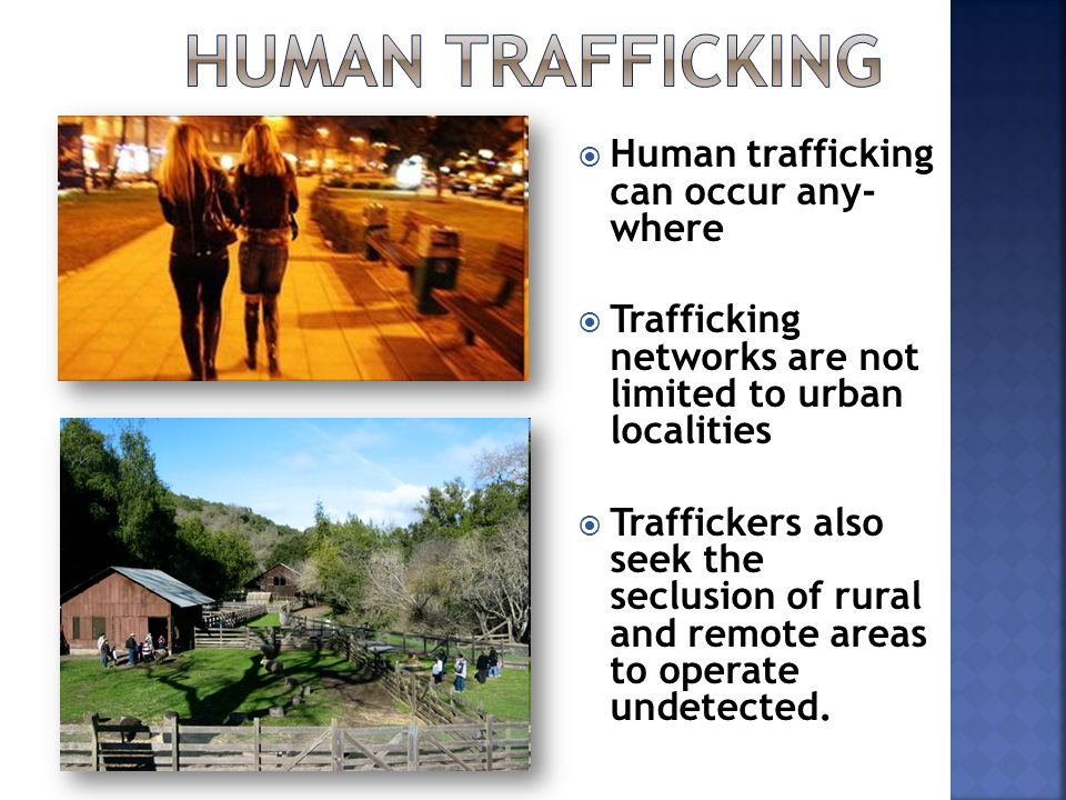  Human trafficking can occur any- where  Trafficking networks are not limited to urban localities  Traffickers also seek the seclusion of rural and remote areas to operate undetected.