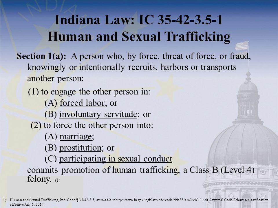 Indiana Law: IC 35-42-3.5-1 Human and Sexual Trafficking 1)Human and Sexual Trafficking, Ind. Code § 35-42-3.5, available at http://www.in.gov/legisla