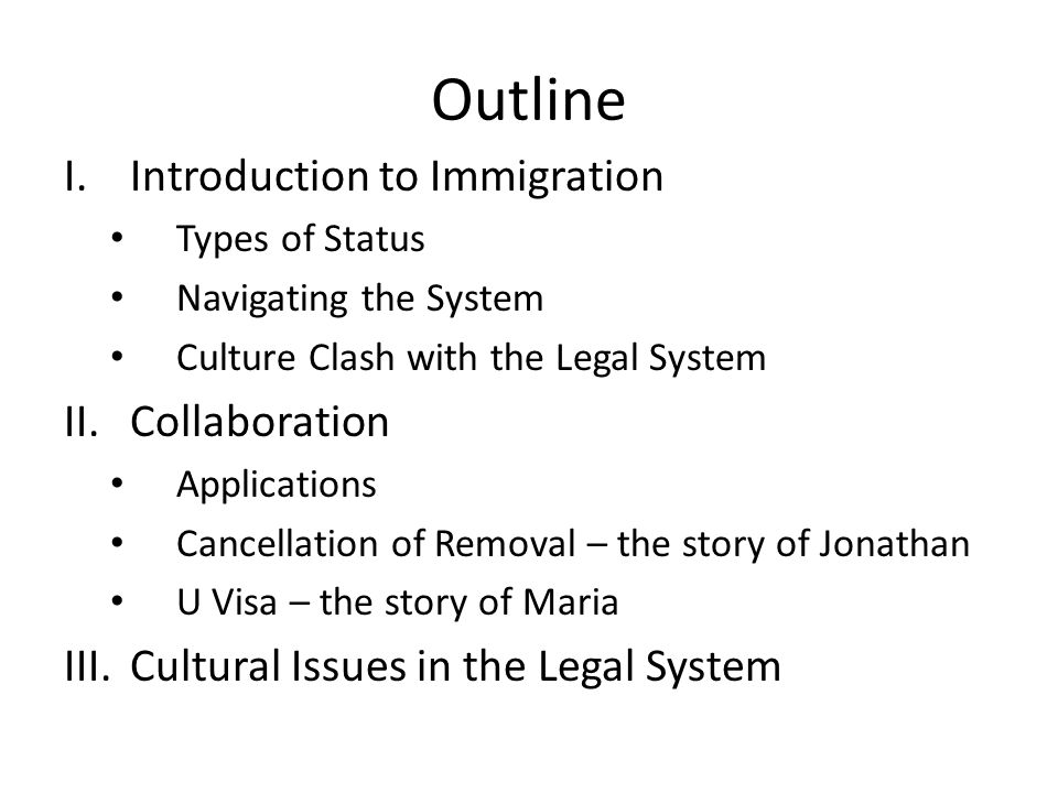 Navigating the System 1.Undocumented – No process – Constant potential for deportation 2.Applications – Lengthy timeframe – Lack of information available from government during process 3.Court – Lengthy timeframe – Full hearing with opposing counsel, and judge to determine eligibility