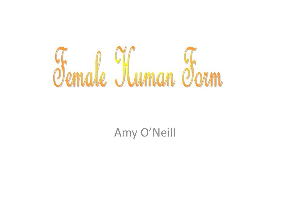 Amy O'Neill