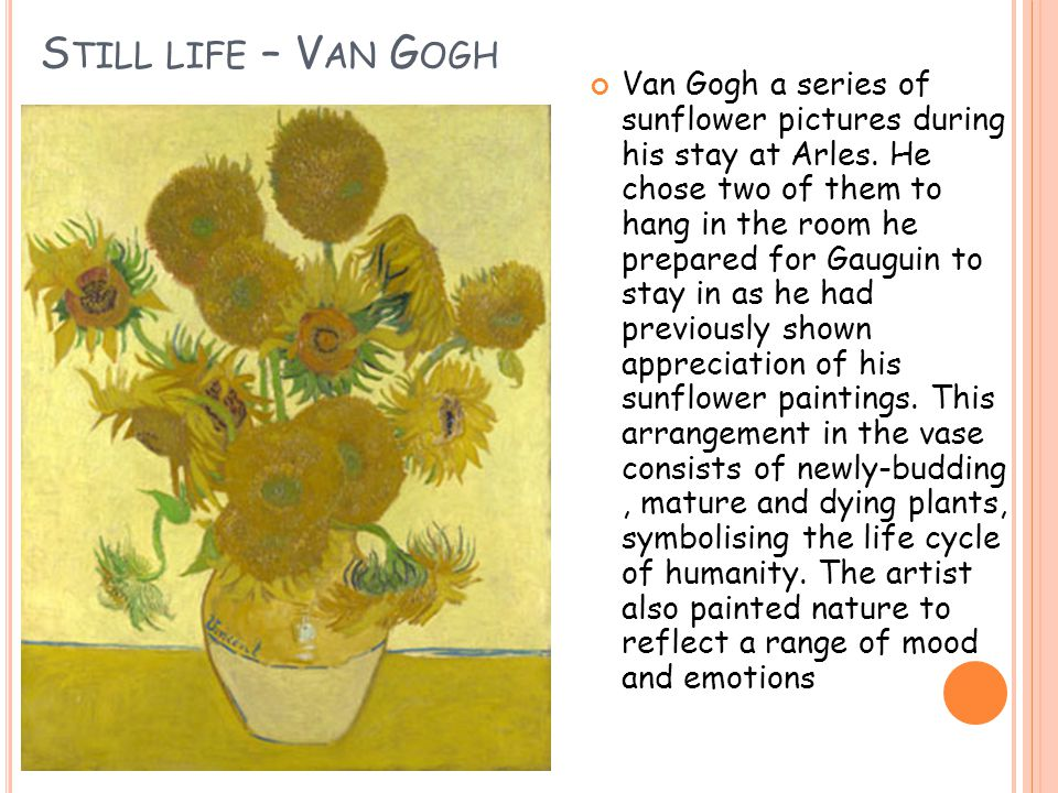 S TILL LIFE – V AN G OGH Van Gogh a series of sunflower pictures during his stay at Arles.